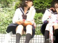 野外座りパンチラ!風でめくれ上がるスカートを押えても純白パンツが見えてる制服娘