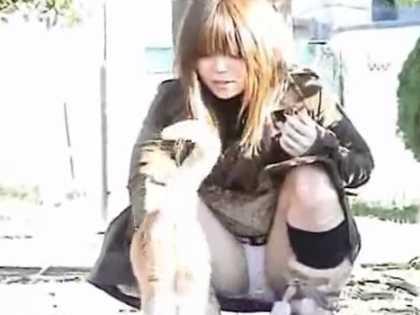 猫を手なづけしゃがみパンチラ!軽く股を開いて純白パンティー丸見えの茶髪ギャル